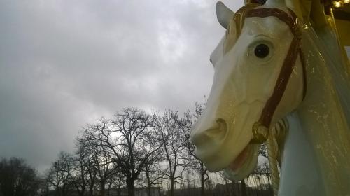cheval WP_20160102_15_39_35_Pro (1).jpg