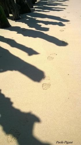 des pas et des ombres.jpg