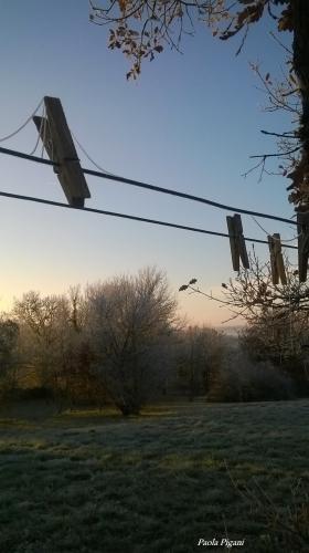 Fil d'hiver.jpg